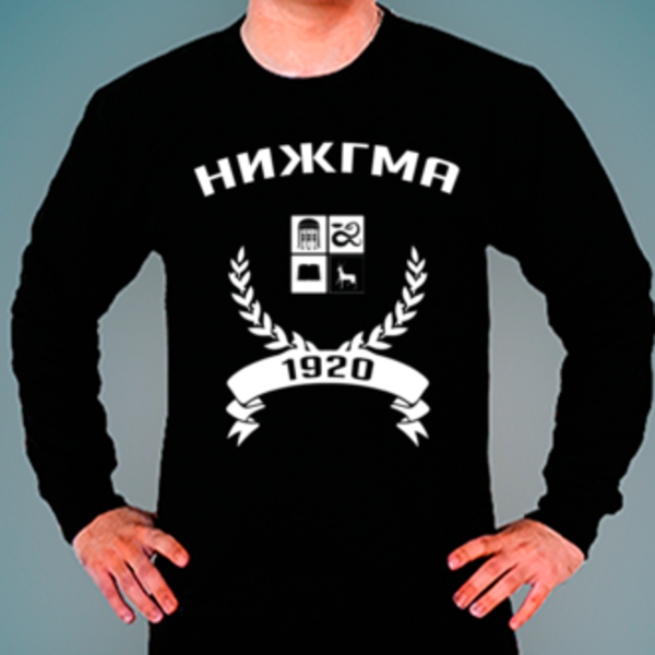 Свитшот с логотипом Нижегородская государственная медицинская академия (НИЖГМА)